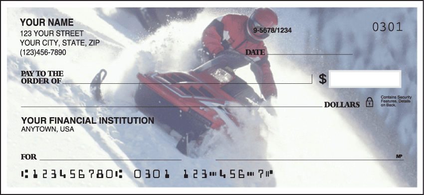 Enlarged view of snowmobile checks