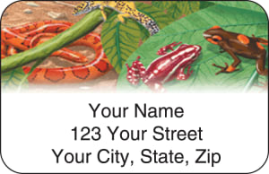 Reptilian Address Labels – click to view product detail page