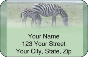 Safari Address Labels – click to view product detail page