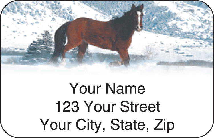 Horse Enthusiast Address Labels - click to view larger image