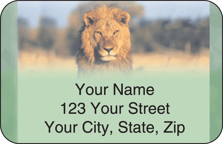 safari address labels - click to preview